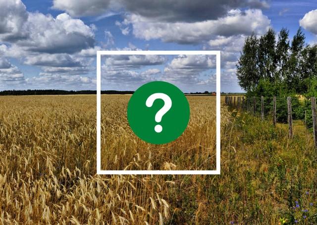 Europejski Zielony Ład - co przyniesie polskim rolnikom?