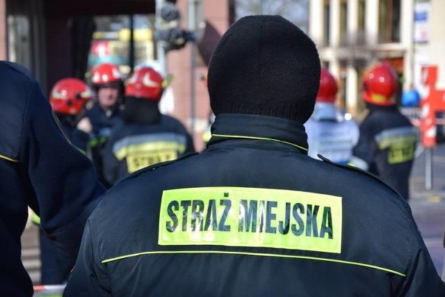 Ile zarabiają toruńscy strażnicy miejscy? O jakich kwotach mowa? Jak te zarobki prezentują się na tle całej Polski? Sprawdziliśmy! W artykule prezentujemy zestawienie przygotowane w styczniu 2021 roku przez księgowość tej służby. CZYTAJ DALEJ NA KOLEJNYCH SLAJDACH>>>>>