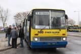 Nowa linia autobusowa. Obsłuży ją przegubowy Ikarus