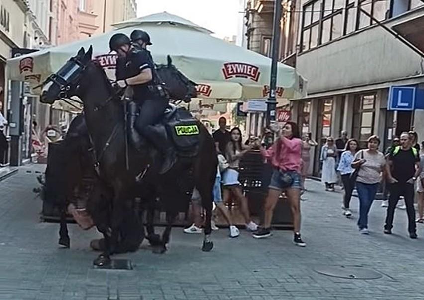 Koń policyjny niemal stratował mężczyznę w Katowicach