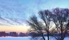 Myślęcinek powinien być enklawą przyrody dla Bydgoszczy? Czy może miejsce trzeba jeszcze ożywić? Zarząd LPKiW zbiera opinie bydgoszczan na temat parku.