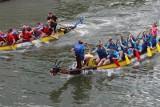 W sobotę wyścigi smoczych łodzi na Odrze