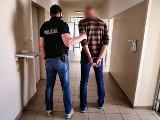 Juchnowiec Kościelny. Konopie indyjskie w szklarni. Policja zatrzymała 42-letniego plantatora (zdjęcia)