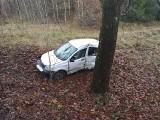 Kierujący fiatem z niewyjaśnionych przyczyn wypadł z drogi i uderzył w przydrożne drzewo [zdjęcia]