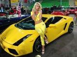 Efektowne samochody i piękne kobiety. STS Tuning Show Bydgoszcz 2013 za nami [wideo, zdjęcia]
