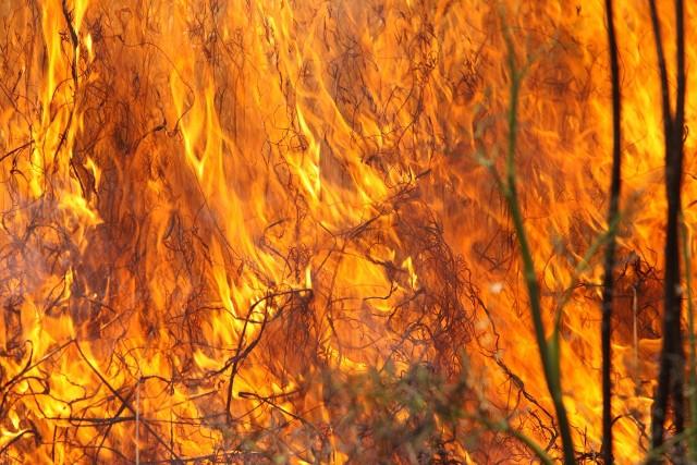 Zgłoszenia o pożarach docierały systematycznie. Pierwsze w chwilę po godz. 19. Następne zaś o 21, 22, 23, a ostatnie kwadrans przed północą.