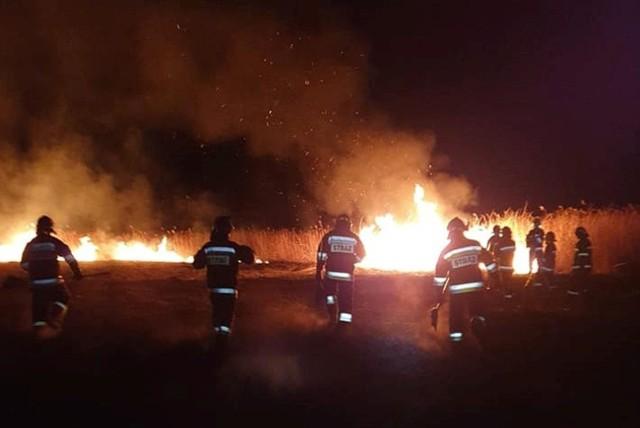 Strażacy walczyli z ogniem przez całą noc