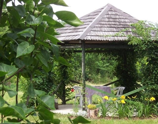 Zgodnie z wyrokami Naczelnego Sądu Administracyjnego tylko takie altany mogą stać w rodzinnych ogrodach działkowych.