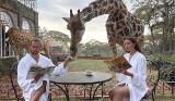 Grzegorz Krychowiak poi żyrafę. Jego zdjęcie z Kenii zrobiło furorę