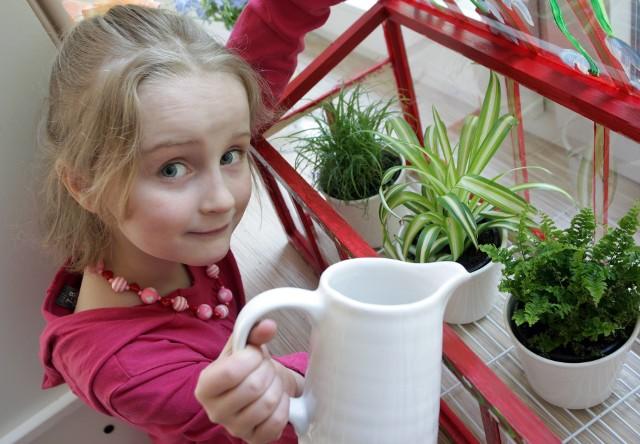 Rośliny do pokoju dziecka trzeba wybrać uważnie. Ale warto to zrobić, bo nie tylko ozdobią pokój, oczyszczą powietrze, ale przede wszystkim - mogą sprawić dziecku radość.