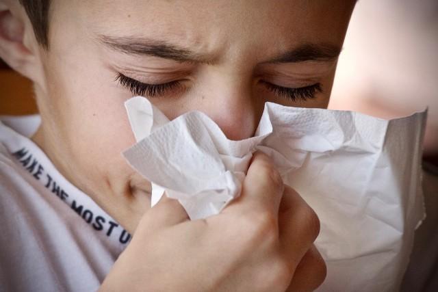 Wrzesień to pierwszy z miesięcy jesiennych, których aura sprzyja zachorowaniom. Państwowy Powiatowy Inspektor Sanitarny w Poznaniu odnotowuje liczbę zachorowań mieszkańców na poszczególne choroby. Sprawdź, ile osób zachorowało na grypę, odrę i boreliozę w ubiegłym miesiącu?Czytaj dalej --->