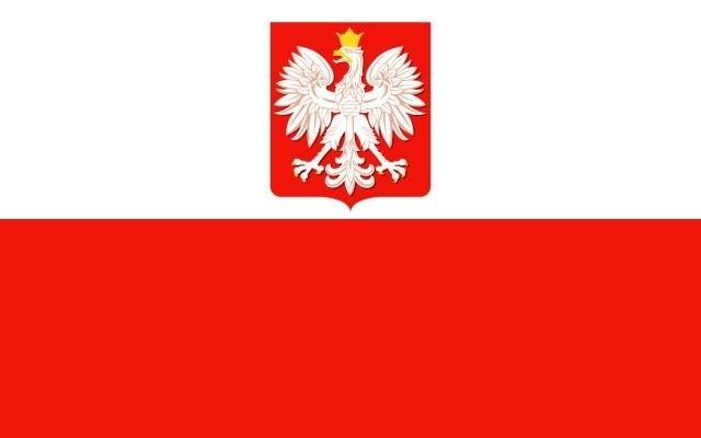 W spotkaniu towarzyskim rozegranym w hiszpańskiej Maladze, reprezentacja Polski pokonała reprezentację Rumunii 4:1 (4:1).