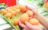 Wiejskie jaja, z zagrody lub od spacerujących kur? Nie wierzcie w takie bajki
