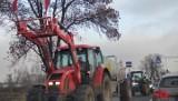 Protest rolników w Strykowie. Traktory zablokowały rondo. Agrounia znów wyjechała na drogi!