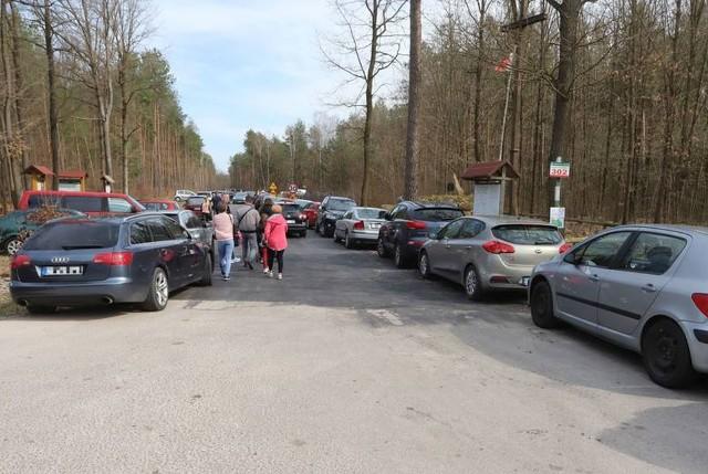 Królewskie Źródła to bardzo popularne miejsce w regionie radomskim.
