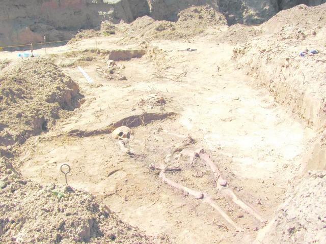 Niektóre szkielety leżą tuż pod powierzchnią ziemi