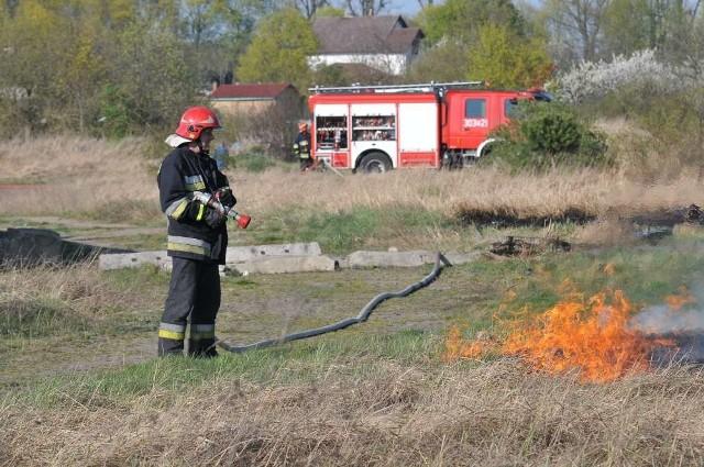 Płonęły trawy nad Wartą/zdjęcie ilustracyjne