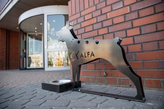Alfa CentrumGaleria Alfa to miejsce przyjazne zwierzętom. Można przychodzić tam z psami, a przed budynkiem stoi poidło regularnie napełniane wodą. Zwierzę powinno być na smyczy i w kagańcu. Co do sklepów wewnątrz galerii, decyzja o przyprowadzeniu psiaka zależy od najemcy.