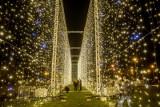 Tu jest jak w bajce! Oto niezwykłe iluminacje w Parku Reagana w Gdańsku. Wielki świetlny tunel i tysiące światełek!