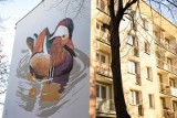 Kraków. Nowe murale na osiedlu na Kozłówce. To wyjątkowe dzieła [ZDJĘCIA]