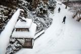 Pogoda na zimę 2021. Uderzenie zimna ze wschodu. Pogoda na styczeń. W Polsce gigantyczny mróz i zawieje śnieżne. Poznaj prognozy