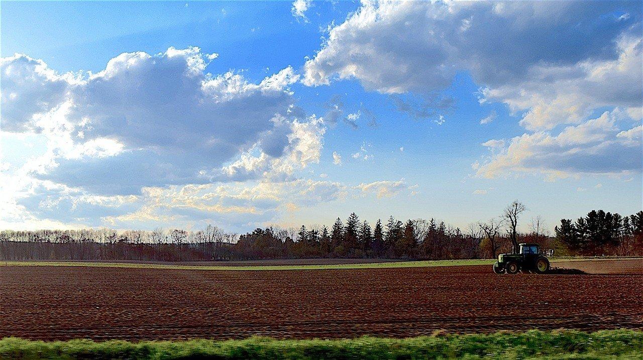 Zaawansowane CENY ZIEMI rolnej 2018 w Polsce. Ile kosztuje hektar gruntów w AB84