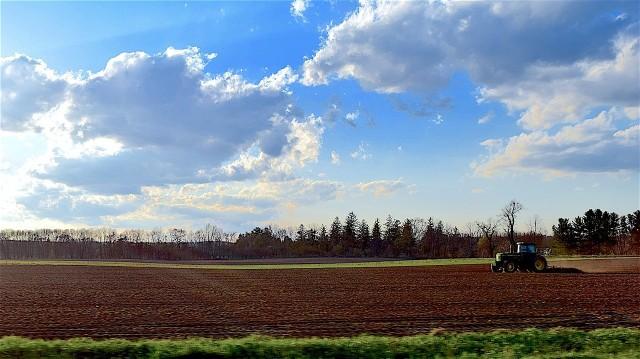 Według najnowszych danych - średnia cena ziemi rolnej w Polsce wynosi 42 455 zł