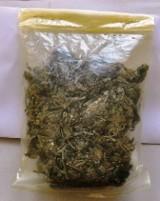 Zatrzymano handlarza marihuaną