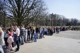 Palmiarnia Poznańska: Długa kolejka w parku Wilsona. Poznaniaków przyciągnął pokaz kotów rasowych [ZDJĘCIA]