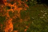 Tragedia w Wasilkowie. W okolicy lasu spłonęła kobieta. Jej życia nie udało się uratować