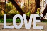 Życzenia na WALENTYNKI! Najlepsze wiersze miłosne na święto zakochanych. Miłosne wierszyki na WALENTYNKI 14.02.2021