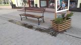 Chełmno. Ławki w mieście - w których miejscach już się pojawiły nowe ławki? Zdjęcia