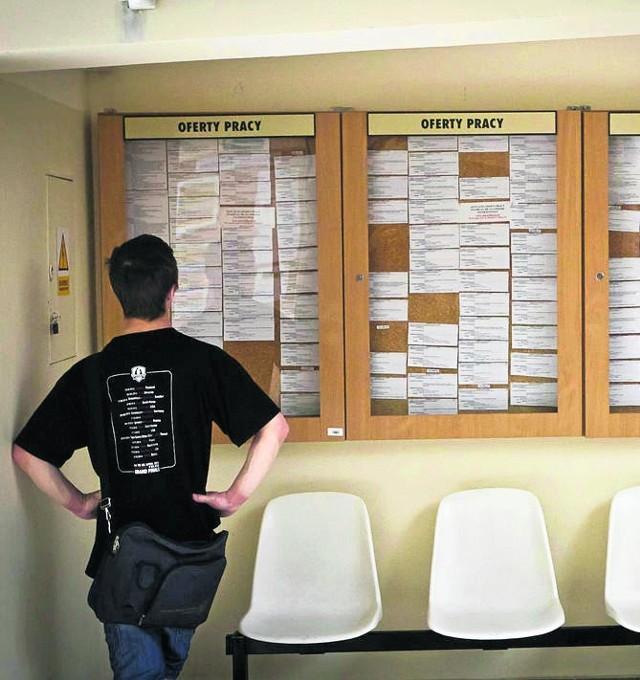 Pracownicy pośredniaków zdają sobie sprawę, że około 1/3 osób rejestruje się tylko dla ubezpieczenia.