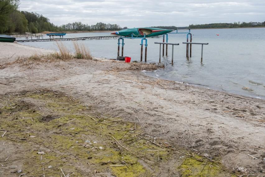 Sytuacja na Pojezierzu Gnieźnieńskim jest fatalna. Każdego roku stan wody w najpiękniejszych wielkopolskich jeziorach systematycznie się obniża. Zobacz na zdjęciach.