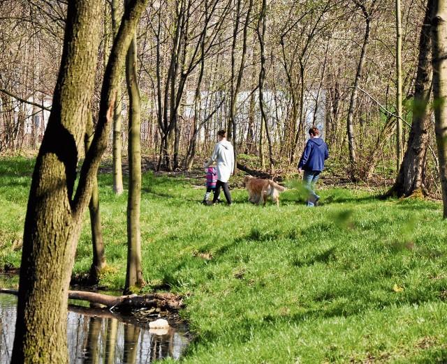 Park Duchacki czeka na zagospodarowanie
