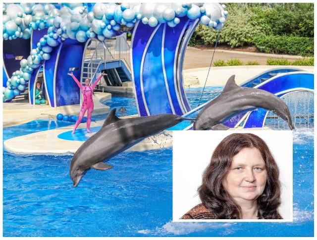 Radna Małgorzata Miękisz-Muller wnioskowała na sesji, by zbudować w Gorlicach delfinarium.