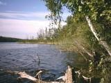 Zwłoki nad jeziorem w Bachotku. Policja prosi o pomoc