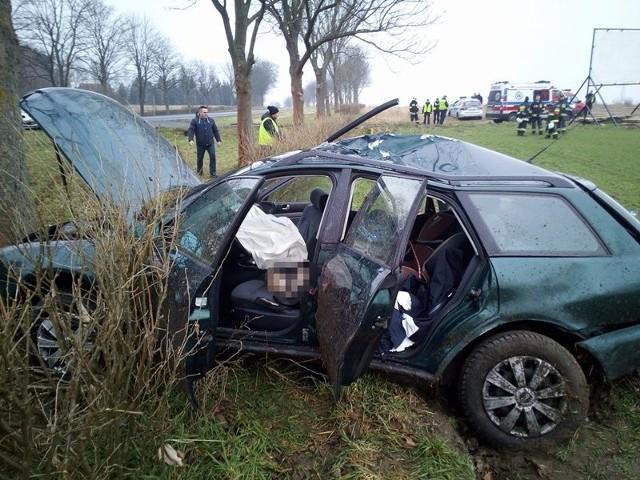 Do poważnego wypadku doszło na docinku Osiecznica-Marcinowice. -  Z niewyjaśnionych jeszcze przyczyn samochód wypadł z drogi – mówi asp. szt. Justyna Kulka, rzeczniczka krośnieńskiej policji. Audi z duża siłą uderzyło bokiem w drzewo.Na miejsce wypadku przyjechały służby ratunkowe. Miejsce zabezpieczyli strażacy. Dostali się również do kierowcy w rozbitym samochodzie. Mężczyzna został wydobyty z wraku audi i przekazany ekipie pogotowia ratunkowego. W ciężkim stanie trafił śmigłowcem do szpitala w Zielonej Górze. – Kierowca doznał między innymi urazów głowy – mówi asp. szt. Kulka. W audi jechał pies. Zwierzę zginęło na miejscu.  Krośnieńska policja pracuje na miejscu wypadku. Trwa wyjaśnianie przyczyn zdarzenia. – Pamiętajmy, że drogi są śliskie. Co chwilę pada deszcz, momentami drogi są do tego oblodzone. Musimy zawsze dostosować prędkość do warunków na trasach – przypomina asp. szt. Dariusz Kocur, naczelnik drogówki w Krośnie Odrzańskim.POLECAMY RÓWNIEŻ:Karetka nie przyjechała, choć córka była w ciężkim stanie20 osób w busie. To mogło skończyć się tragicznie!Najlepsze licea i technika w Lubuskiem [RAPORT]Ksiądz z kolędą: chowaj psa, kawa na koniec, nie ukrywaj się