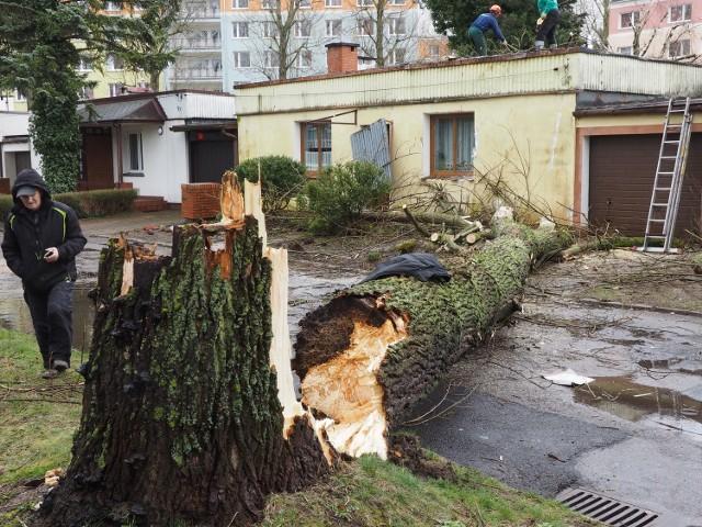 Drzewo przewróciło się na dom przy ul. Sportowej w Koszalinie.