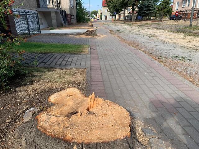 Drzewa przy ul. Mieszka I poszły pod topór. Część mieszkańców nie może odżałować straty