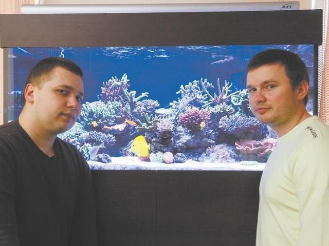 Zakładanie akwariów morskich jest bardzo pracochłonne. Gdybyśmy mieli zlecenie na drugim końcu Polski, nie poradzilibyśmy sobie