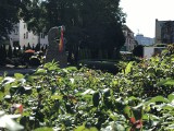 Aktywiści zawiesili tęczowe flagi w Słupsku
