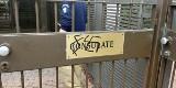 Izrael: Wulgarne napisy i swastyki przy wejściu do polskiej ambasady w Tel Awiwie. Polskie MSZ chce wyjaśnień, jest śledztwo
