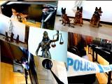 Białystok. Szkolenie psów policyjnych odbyło się na terenie sądu apelacyjnego [ZDJĘCIA]