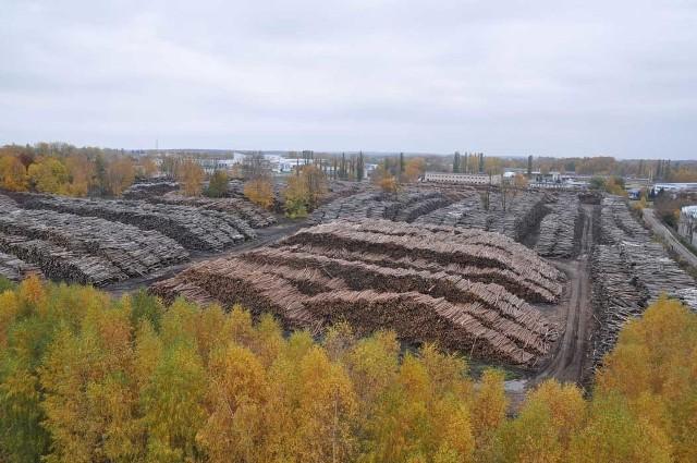 Składowisko drewna przy ulicy Waryńskiego w Szczecinku, dziś powstaje tu hala fabryki mebli.