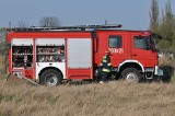 Pożar pola w powiecie szamotulskim. Ogień gasiło 11 zastępów straży pożarnej