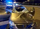 Koszmarny wypadek: Auto zderzyło się z jeleniem na autostradzie A4. Zginął policjant z Leszna