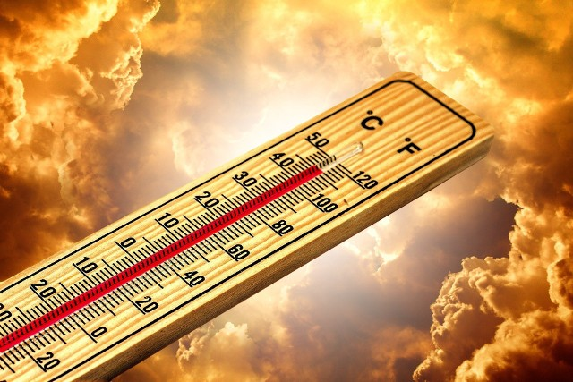 Sprawdź rekordowe temperatury na Kujawach i Pomorzu>>>