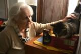 Państwo Zdanowscy z Przejazdowa stworzyli dom dla bezdomnych kotów. Niektóre z nich szykują do adopcji [zdjęcia]