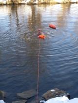 Ratownicy wodni z Kielc na ekstremalnym treningu. Dają z siebie wszystko, aby dobrze przygotować się do sezonu. Zobacz zdjęcia